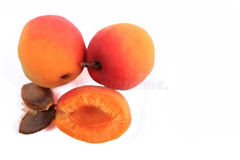 Ripe red apricot royalty free stock photography