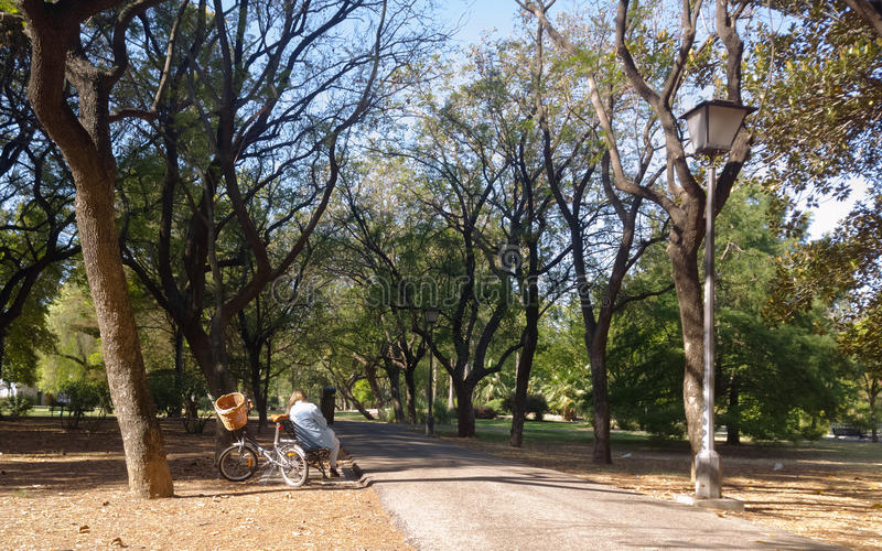 Mature woman with bicycle, reading on a bench in a park stock images