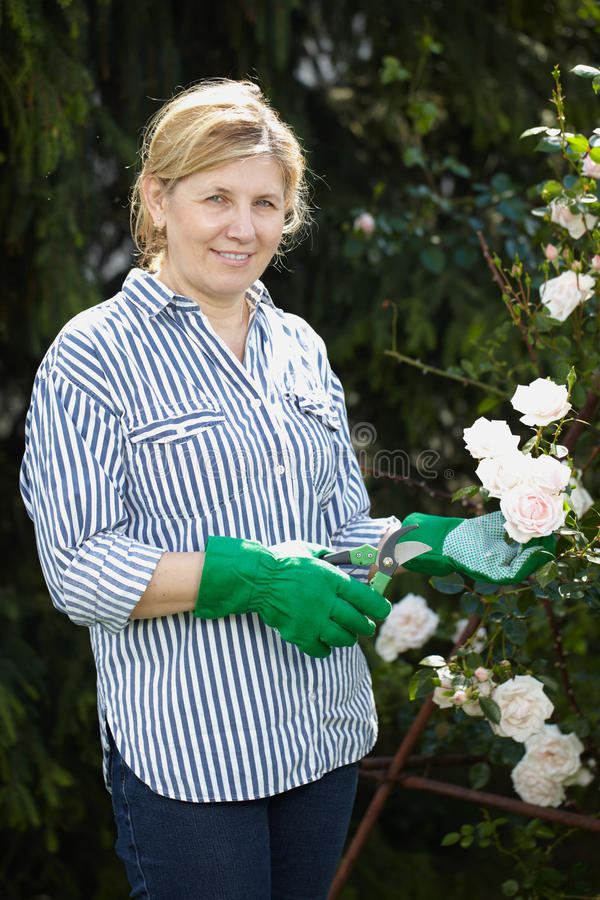 Download Mature Woman Look After Her Garden Royalty Free Stock Photography - Image: 25450737
