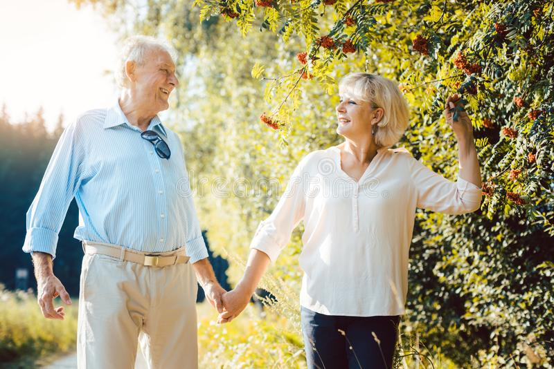 Mature woman and man having a summer walk stock images