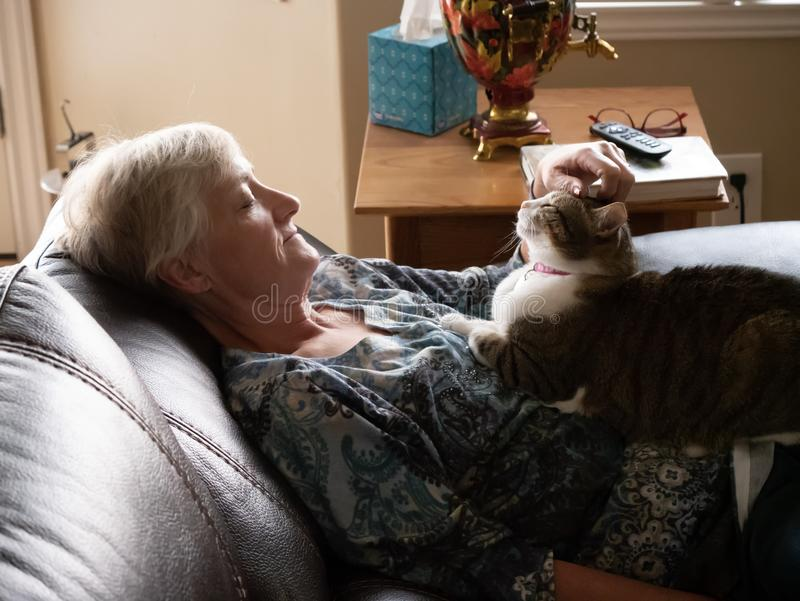 Mature women relaxes as she pets her cat stock images