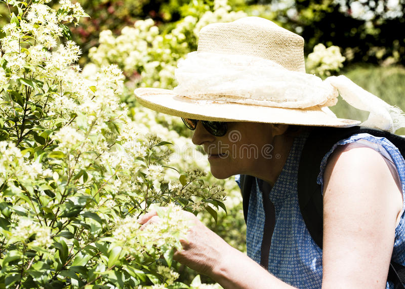 Mature woman smelling flowers stock photo