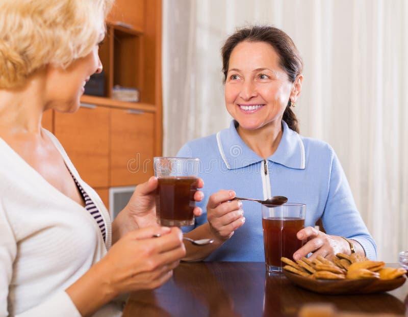 Mature women having tea break royalty free stock image