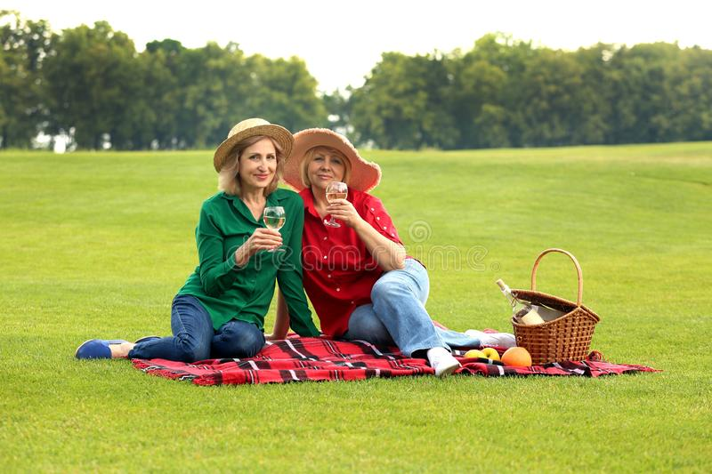 Mature women on a picnic in green park stock photography