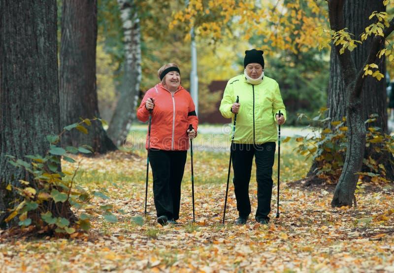 Mature women walking in an autumn park during a scandinavian walk. Wide shot stock photos