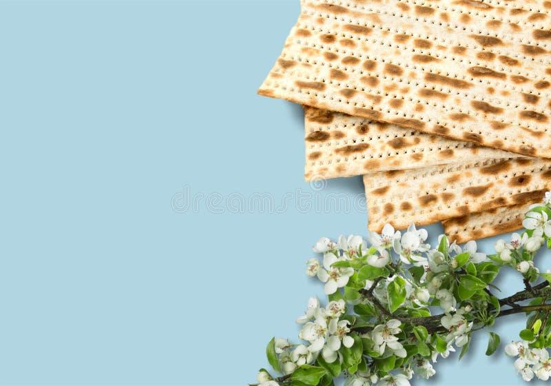 Matzahs Joodse geïsoleerde passover matzah royalty-vrije stock afbeelding