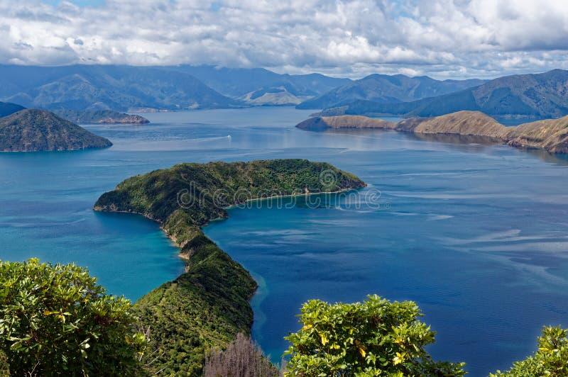 Maud Island in de Marlborough-Geluiden, Nieuw Zeeland stock foto's