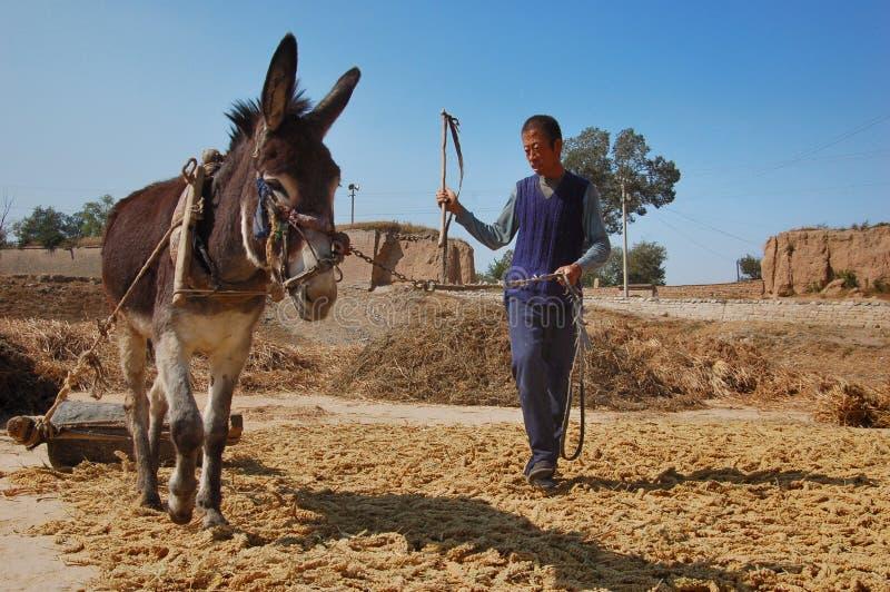 Mauer- und China-Bauernschaft lizenzfreies stockbild