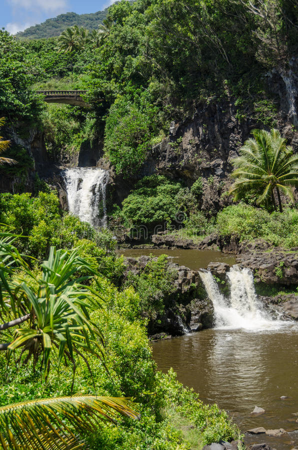 Maui lizenzfreie stockbilder