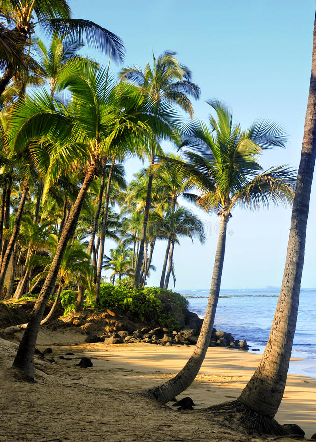 Maui, Hawai immagini stock