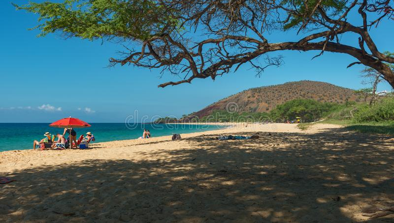 MAUI, HAWAII, USA-DECEMBER 16, 2013: People relaxing in the sun. At famous sandy makeena beach royalty free stock photography