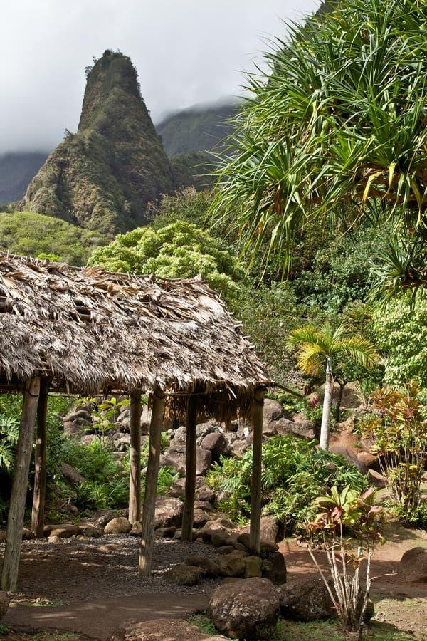 Maui 'Iao igła zdjęcia royalty free
