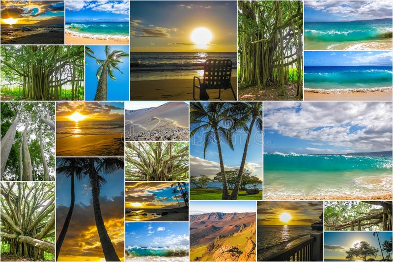 Maui kształtuje teren kolaż zdjęcia royalty free