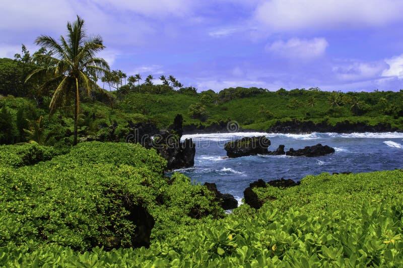 Maui ostkust royaltyfria bilder
