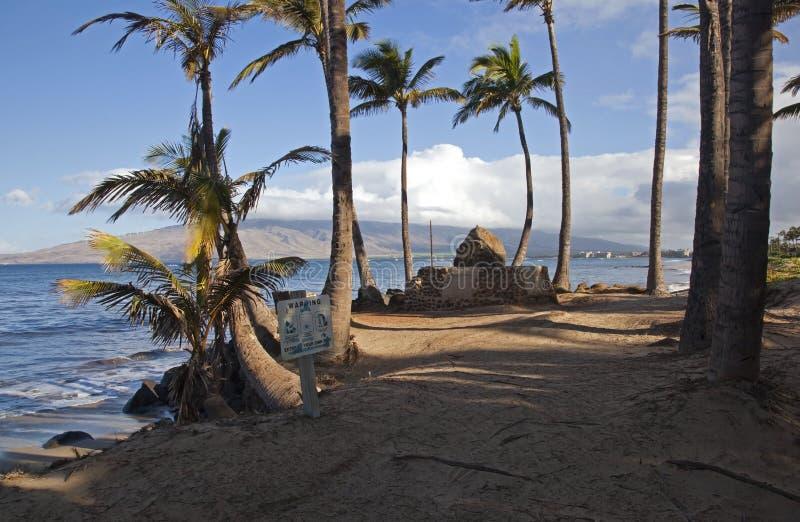 Maui Ranek fotografia royalty free