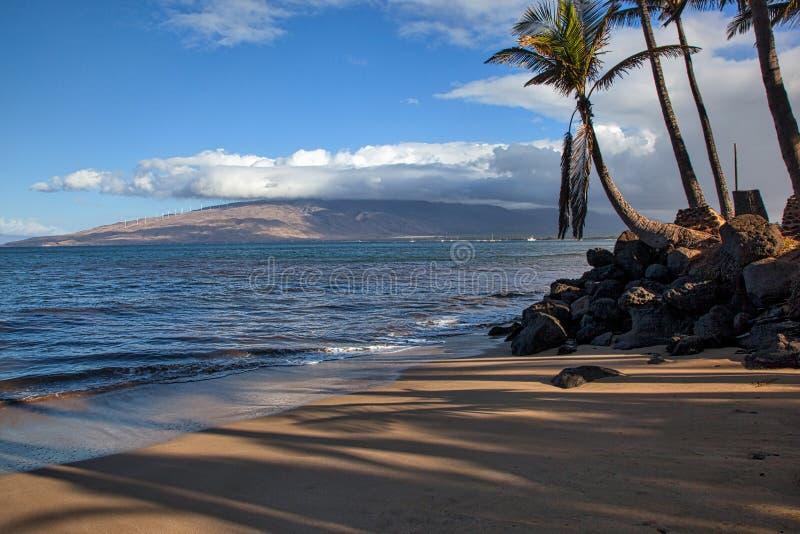 Maui ranek obrazy stock
