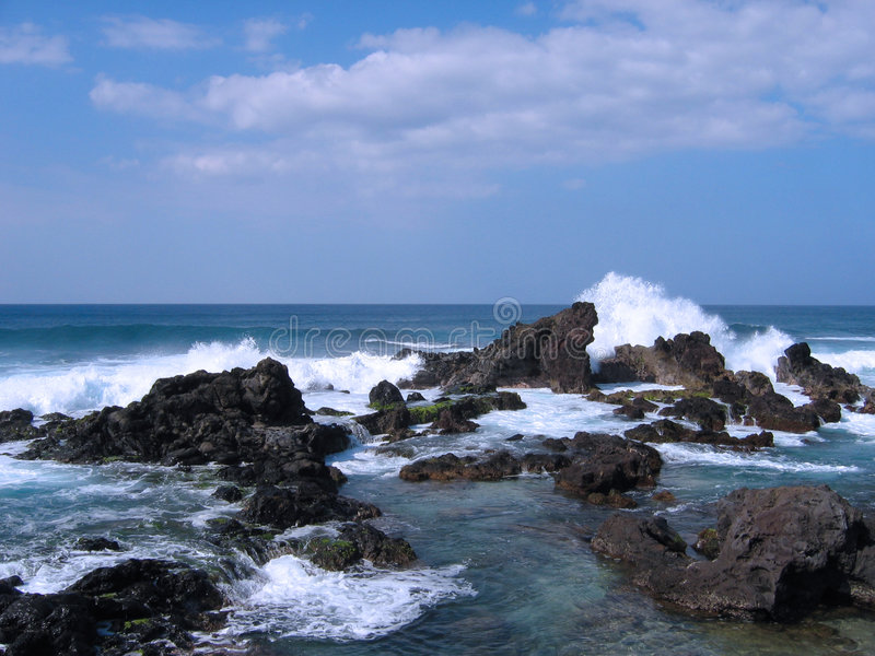 Maui Shore royalty free stock image