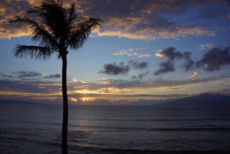 Maui solnedgånghimmel med Underlit moln arkivbild