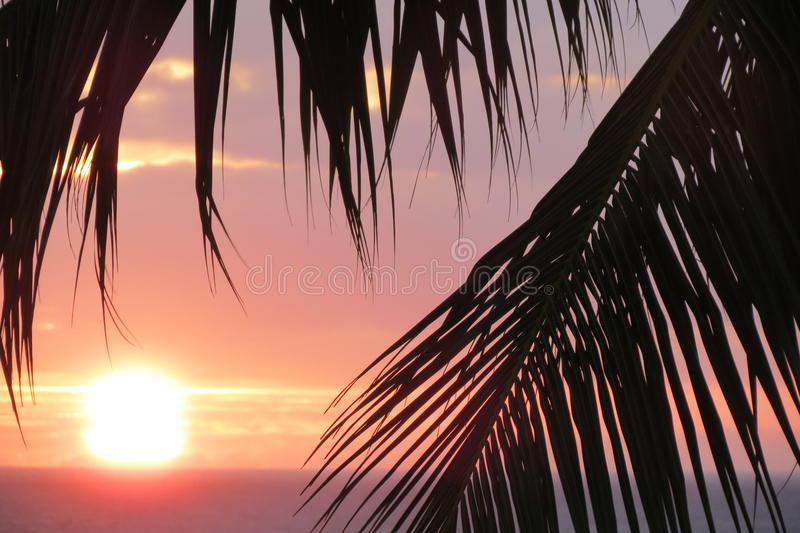Maui Sunset1 royaltyfri foto