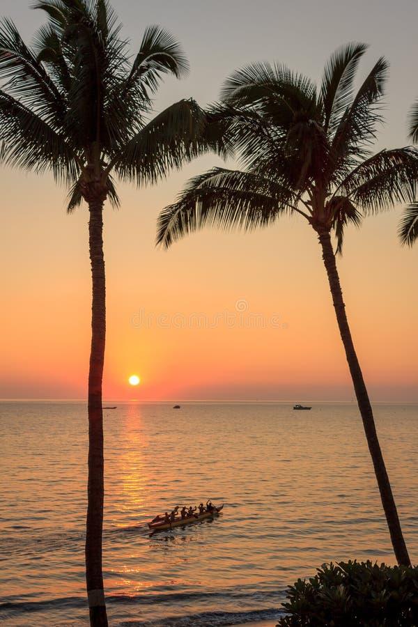 Maui utriggarekanot fotografering för bildbyråer