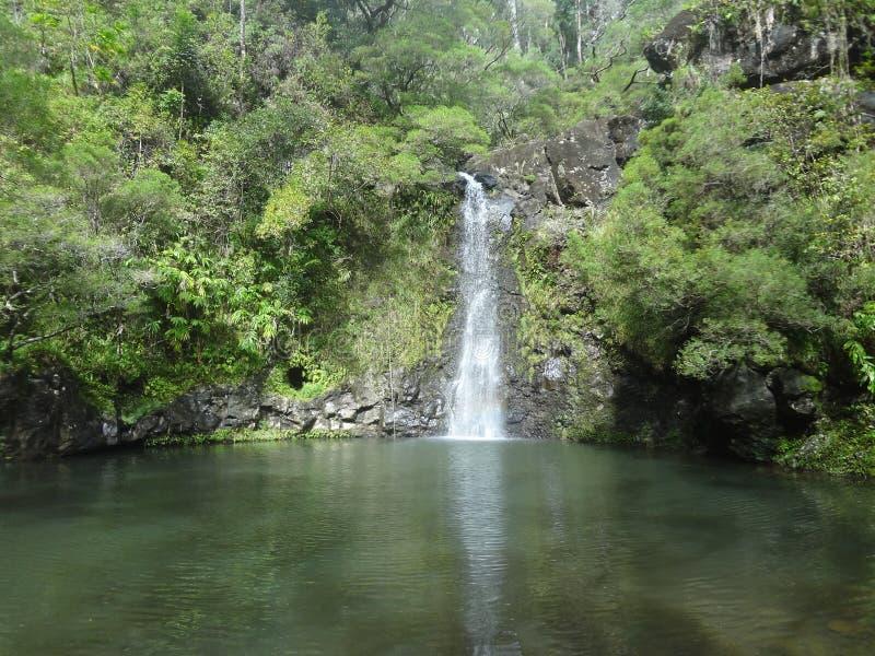 Maui vattenfall arkivbilder