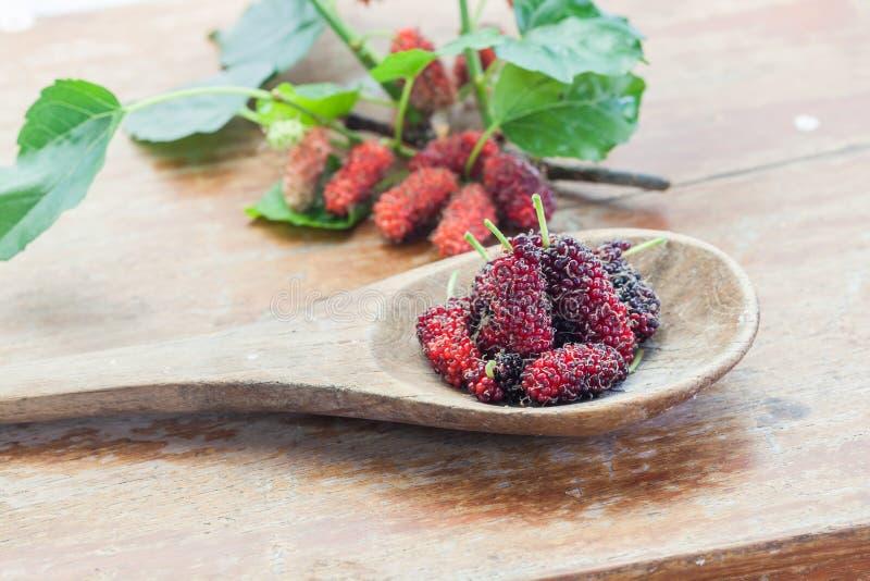 Maulbeerfrucht auf hölzernem Löffel lizenzfreies stockfoto