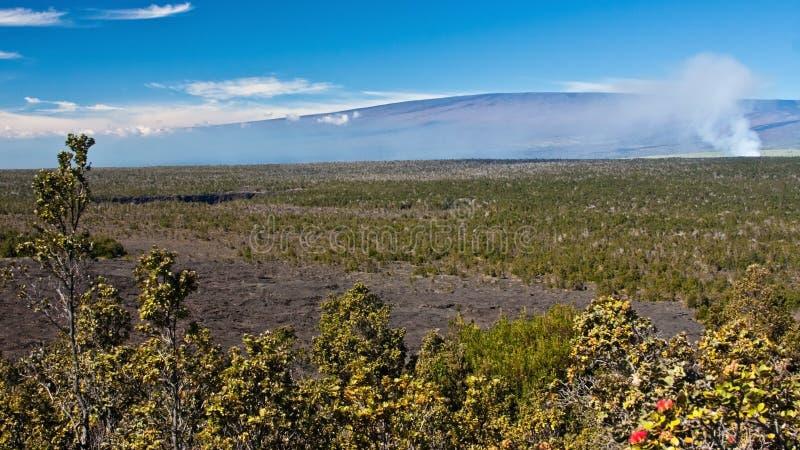 Mauna Loa. The Kilauea Caldera puffs in front of Mauna Loa in Hawaii Volcanoes National Park stock images