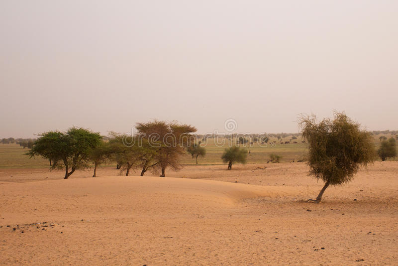 Mauritanian landscape royalty free stock photo