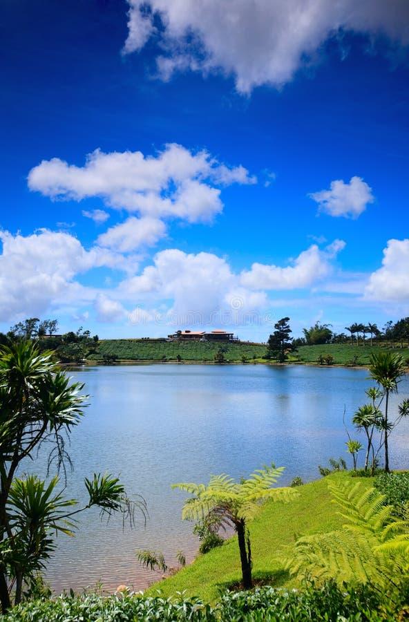 Mauritius stock foto