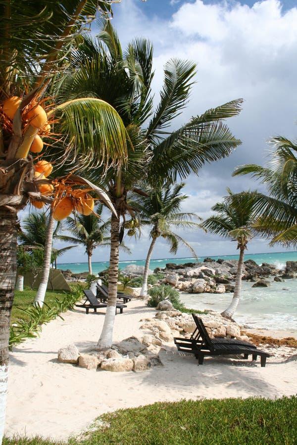 Mauritius - Afrika royalty-vrije stock foto