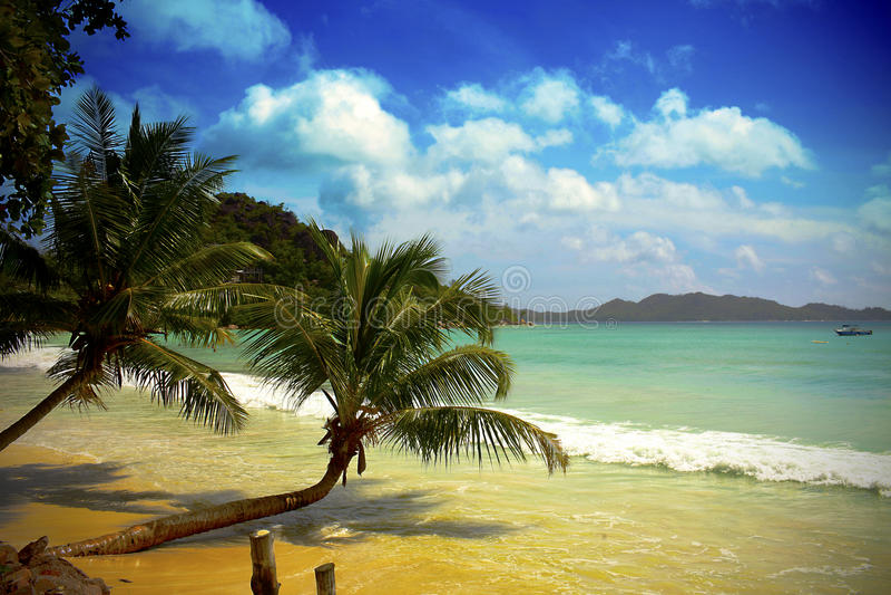 Mauritius Beach stock afbeelding