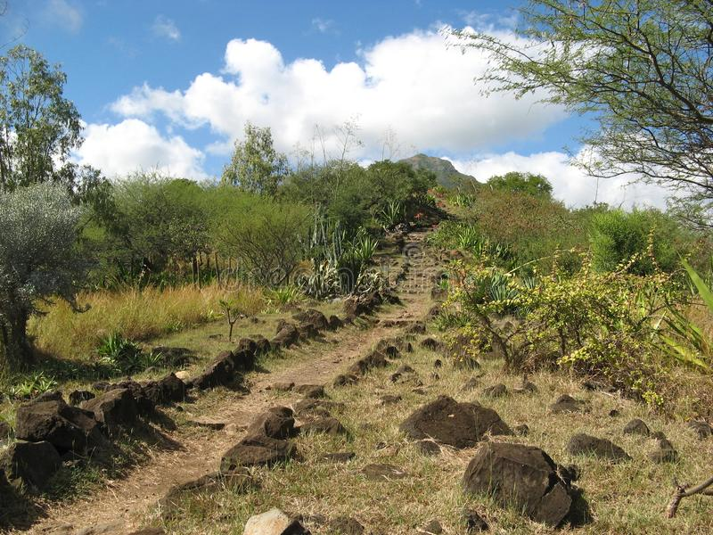 Download Mauritius Pathway Stock Photo - Image: 27089090