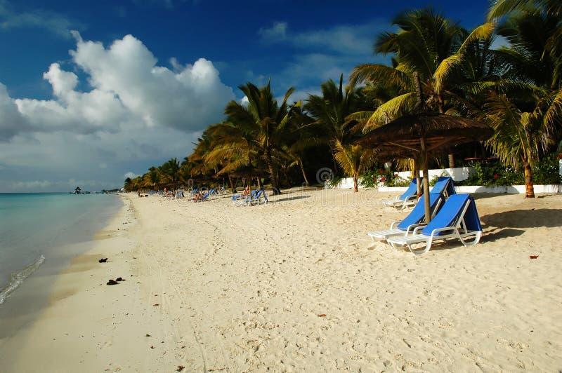 Mauritius seashore royalty free stock images