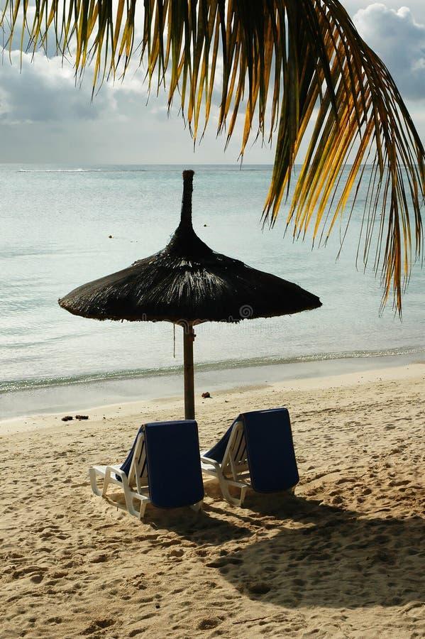 Mauritius seashore stock image