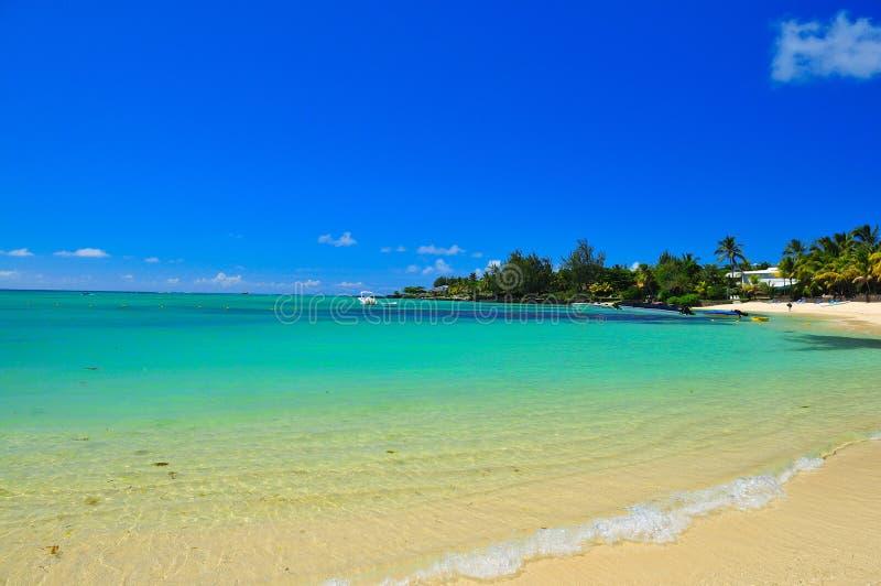 mauritius shoreline royaltyfri bild