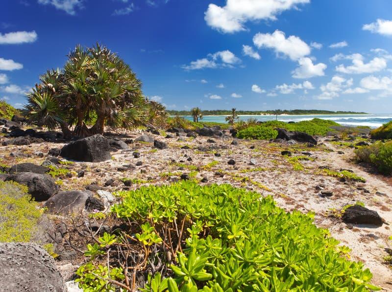 Mauritius. Steenachtig landschap van het eiland Gabriel royalty-vrije stock foto's