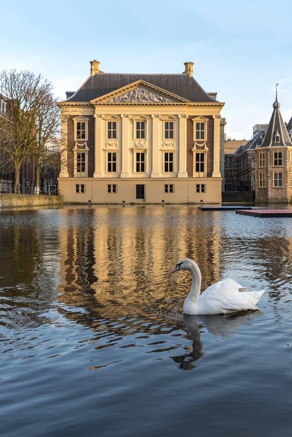 Mauritshuismuseum stock afbeeldingen