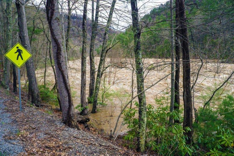 Maury河的洪水的力量 库存照片
