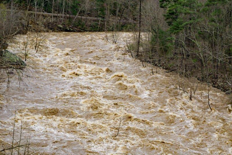 Maury河的洪水的发怒的力量 库存图片
