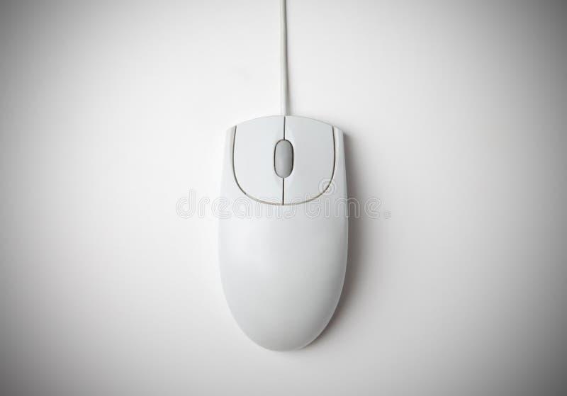 Maus stockfotografie