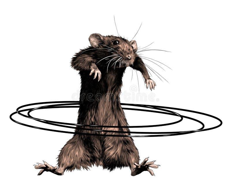 Maus steht hoch und verdreht Hoop in der Taille stock abbildung