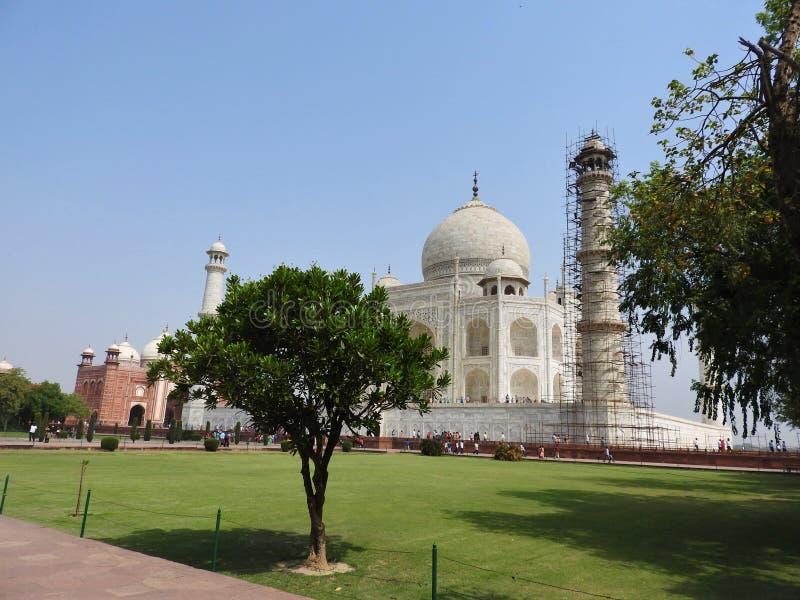 Mausolée de Taj Mahal et symbole de l'amour, marbre en ivoire blanc sur la rive sud de la rivière de Yamuna dans la ville indienn photos stock