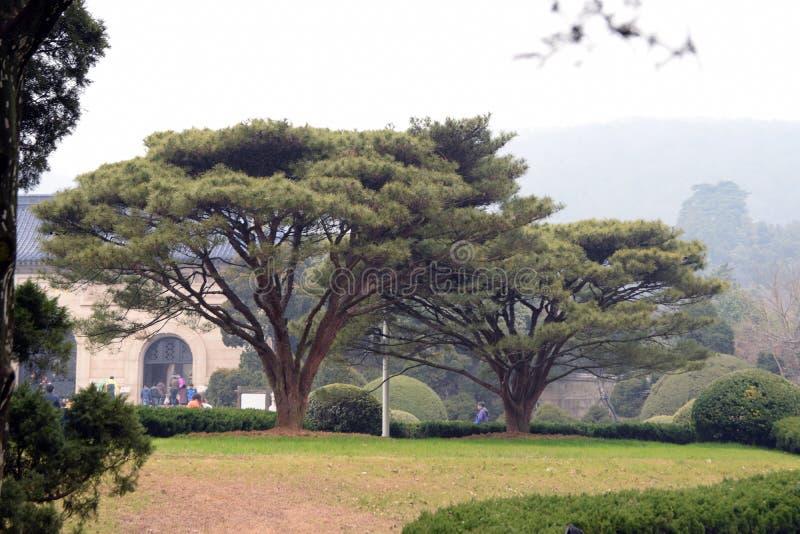 Mausoleo de Sun Yat-sen imágenes de archivo libres de regalías