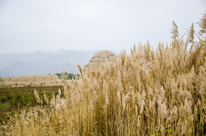 Western Xia imperial tombs. Mausoleum of Xixia Dynasty Western Xia Mausoleum,The Western Xia Mausoleum, also known as the Western Xia Emperor`s Mausoleum and the stock image