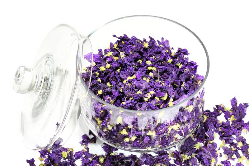 Mauve flowers dried in glass jar. royalty free stock image