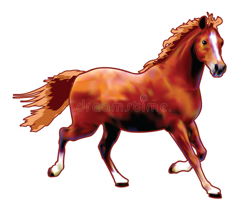 Download Max the horse stock illustration. Image of gallop, animal - 25577160
