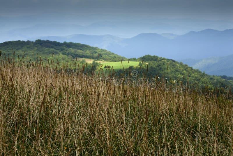 Max Patch, Appalachian Trail, Pisgah NF. Max Patch, Appalachian Trail, Pisgah National Forest, NC stock photography
