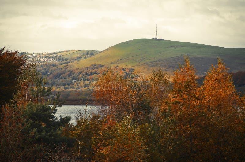 Maximal Greenfield för områdesDovestone behållare, England, UK arkivfoton