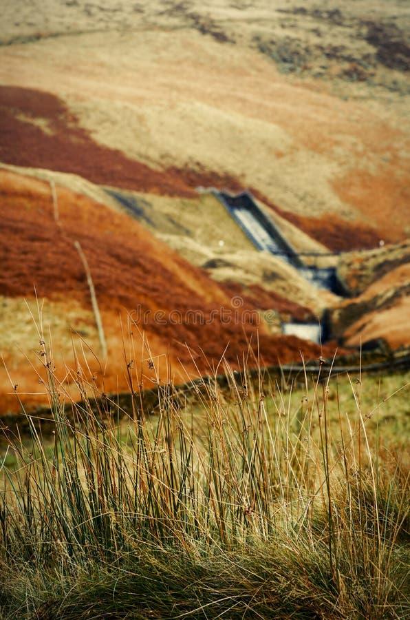 Maximal Greenfield för områdesDovestone behållare, England, UK arkivfoto
