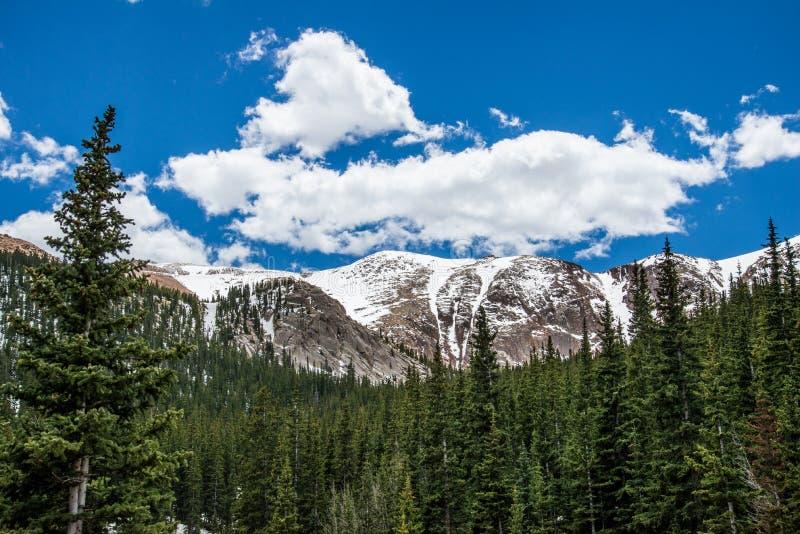 Maximalt Colorado för pik landskap royaltyfri bild
